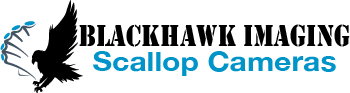 Blackhawk/Scallop cameras